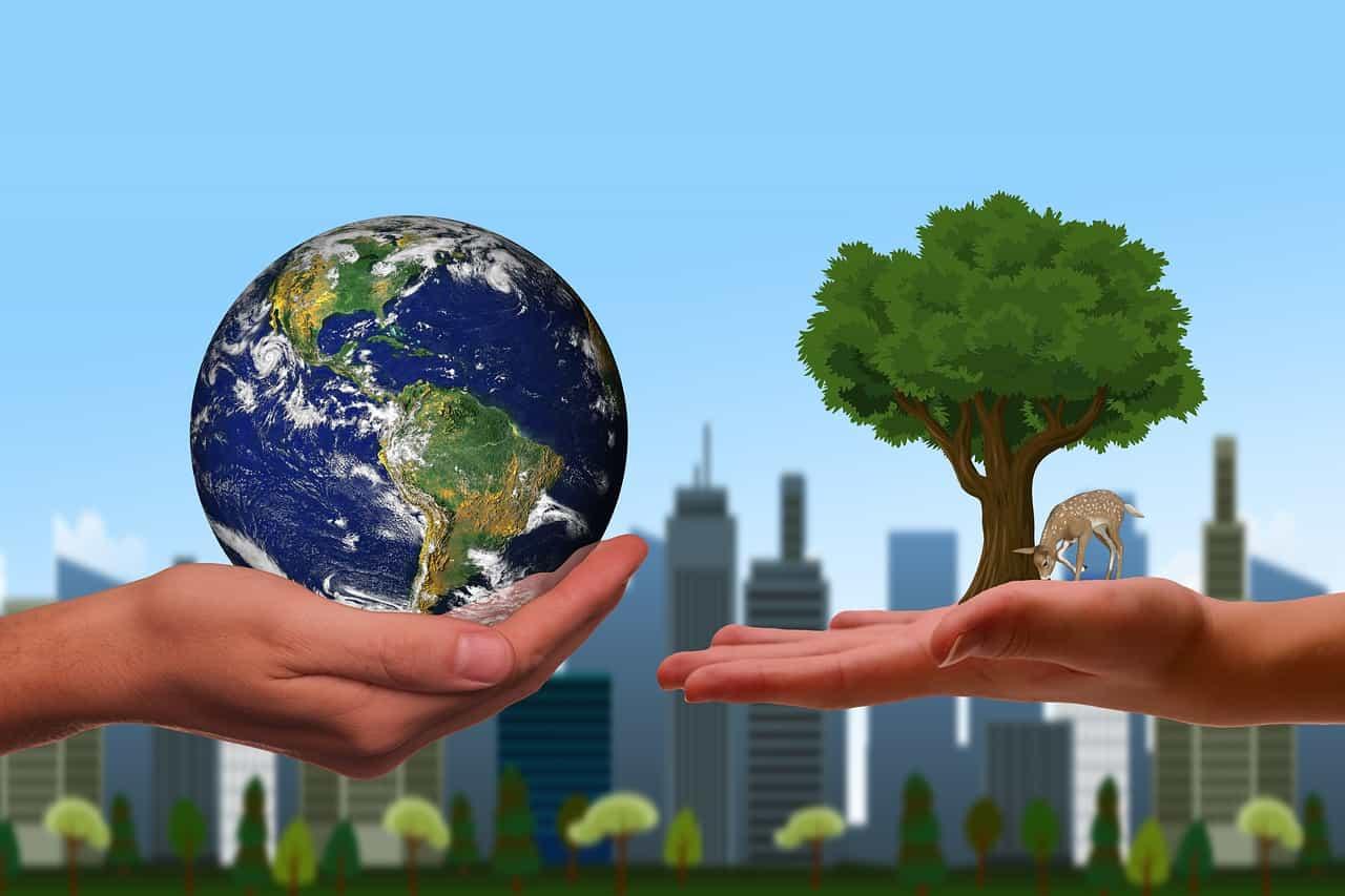 hands, earth, next generation-6135743.jpg